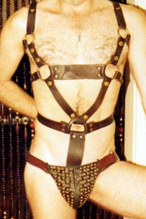 Brass & Brown LeatherJock & Harness